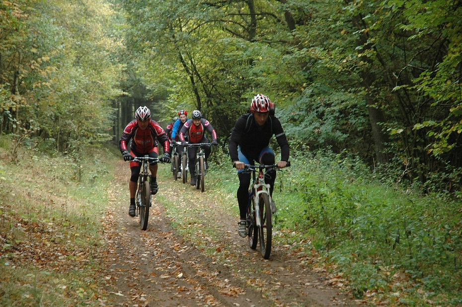Mountain bike riders in forrest in Favrskov